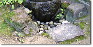 "The ""Role Stones"" - Photo by Lee Schneller Sligh"