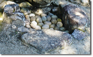 Drain area stones - Photo by Lee Schneller Sligh