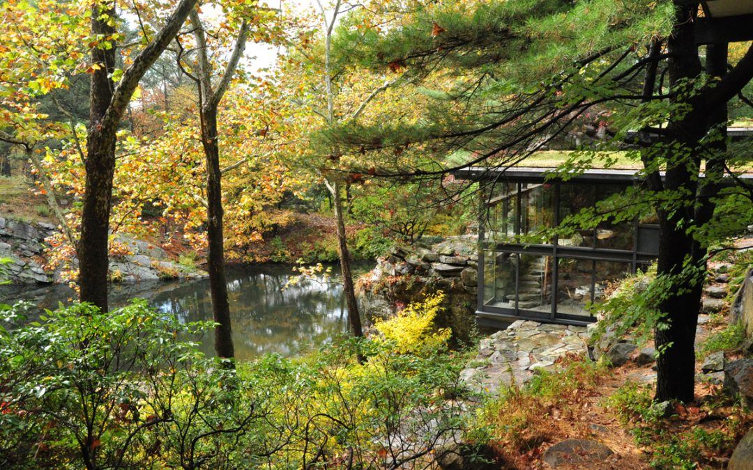 A Japanese Garden Experience in Manitoga