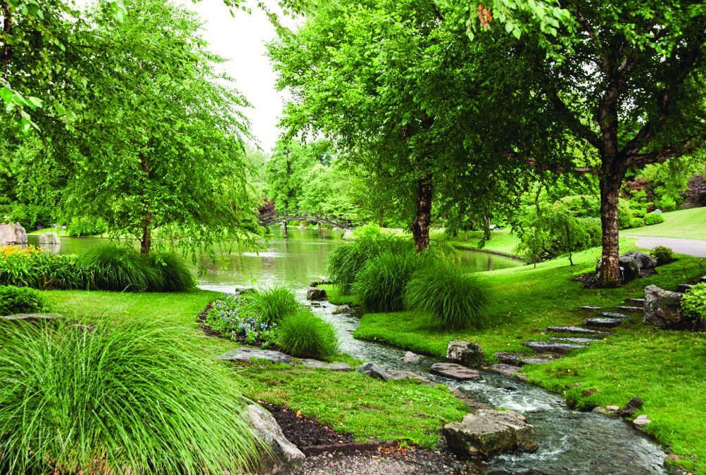 Water Quality Management in the Japanese Garden at Missouri Botanical Garden
