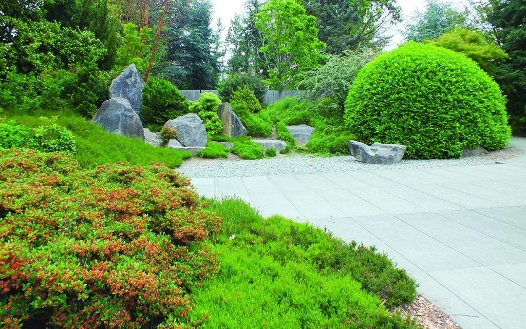 Weekly Volunteer Effort Helps Maintain Kubota Garden